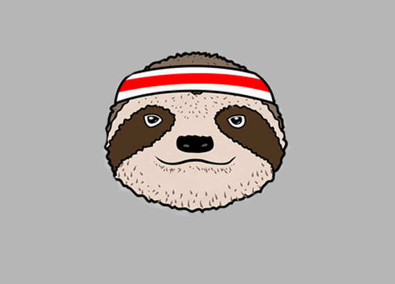 Cover Sloths for Dynamo